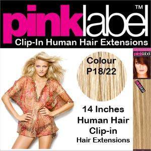 Pink Label Clip in Hair Extensions Colour P18/22