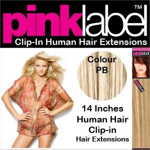 Pink Label Clip in Hair Extensions Colour PB