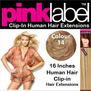 Clip in Human Hair Extensions Colour 14