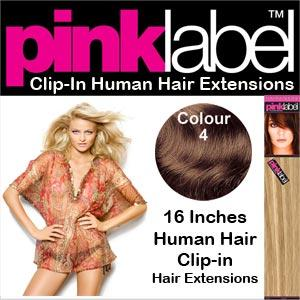 Clip in Human Hair Extensions Colour 4