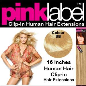 Clip in Human Hair Extensions Colour SB