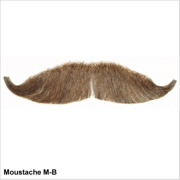 False Moustache Bushy