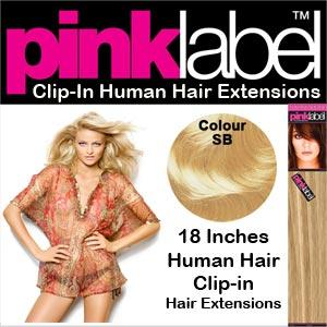 "18"" Clip in Hair Extensions Colour SB"