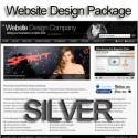 Silver Website Design and Hosting Package